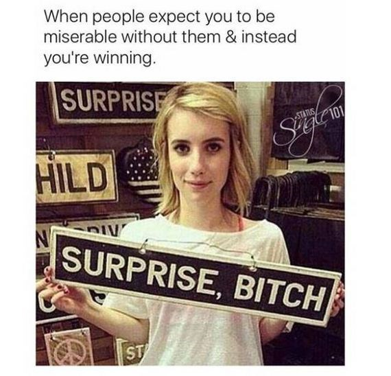 Text - When people expect you to be miserable without them & instead you're winning. SURPRISE STATUS 101 Stglcr HILD SURPRISE, BITCH ST