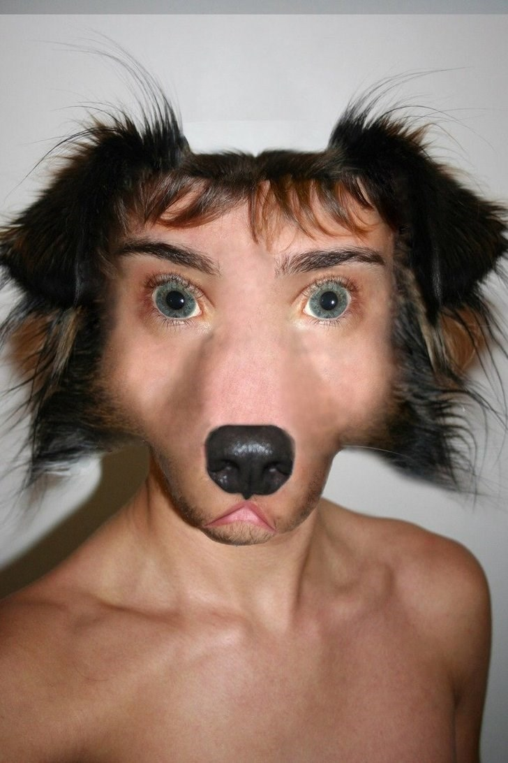 cringeworthy pic of a person photoshopped into a dog