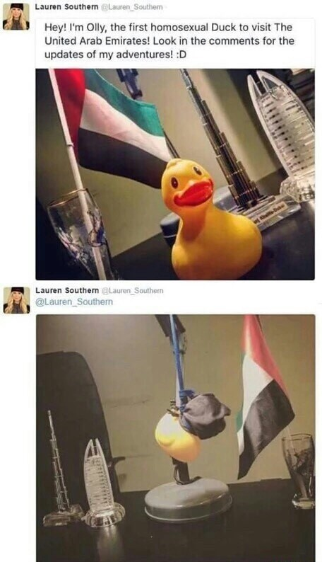 Yellow - Lauren Southern@Lauren Southem Hey! I'm Olly, the first homosexual Duck to visit The United Arab Emirates! Look in the comments for the updates of my adventures! :D Lauren Southern @Lauren Southern @Lauren Southern