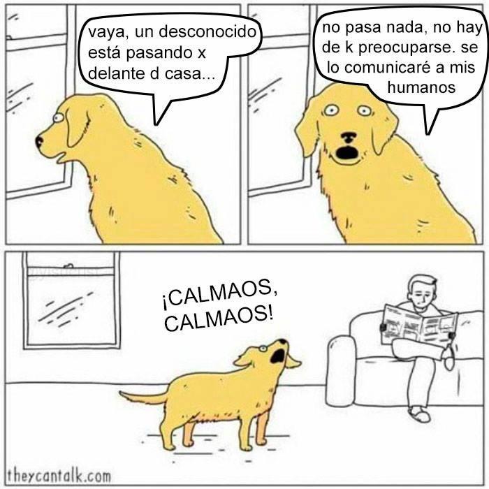 calmaos