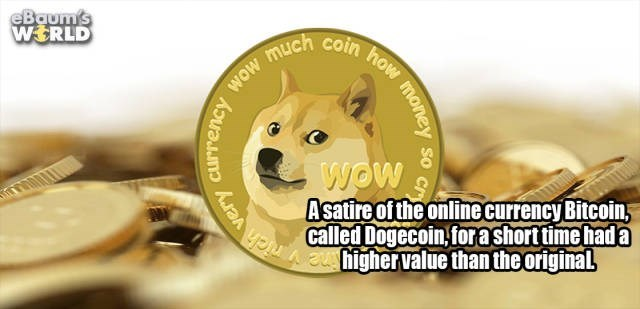 Mammal - eBaum's WERLD WOw Asatire of the online currency Bitcoin called Dogecoin,forashort time had a Ata arSenthighervalue than the original Currency wow much coin how money