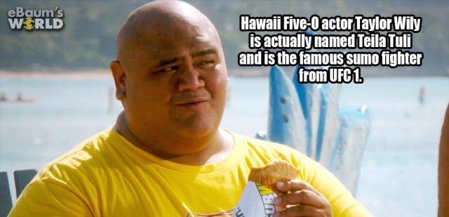 Junk food - eBaum's WERLD Hawaii Five-Oactor Taylor Wily is actually named Teila Tuli and is the famous sumo fighter from UFC 1