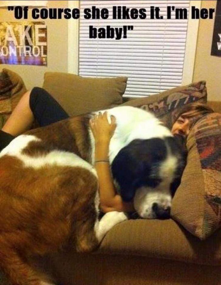 """Dog - her """"Of course she likes it. I'm AKE ONTROL babyl"""""""