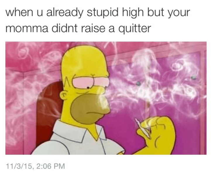dank meme - Text - when u already stupid high but your momma didnt raise a quitter 11/3/15, 2:06 PM
