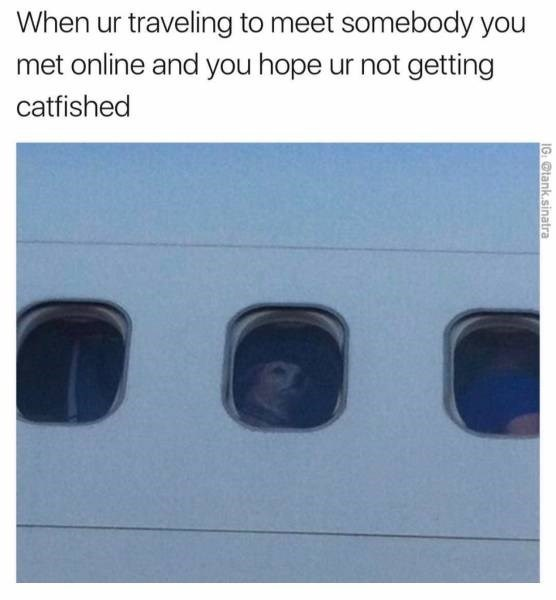 Text - When ur traveling to meet somebody you met online and you hope ur not getting catfished IG:@tank.sinatra