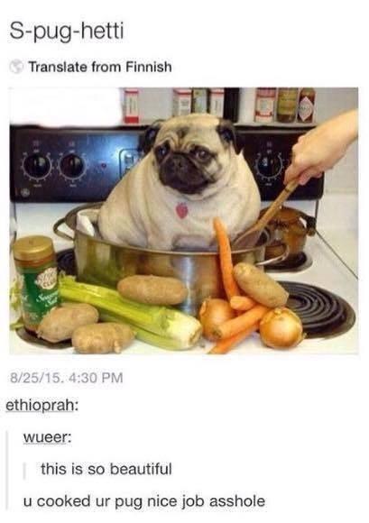 Pug - S-pug-hetti Translate from Finnish 8/25/15. 4:30 PM ethioprah: wueer: this is so beautiful u cooked ur pug nice job asshole