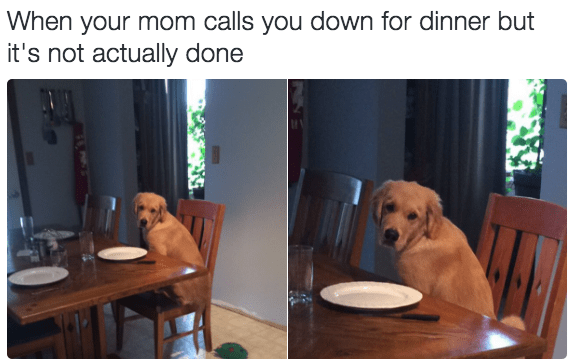 Product - When your mom calls you down for dinner but it's not actually done