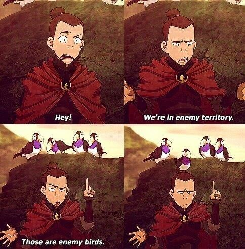 Cartoon - We're in enemy territory. Нey! Those are enemy birds.