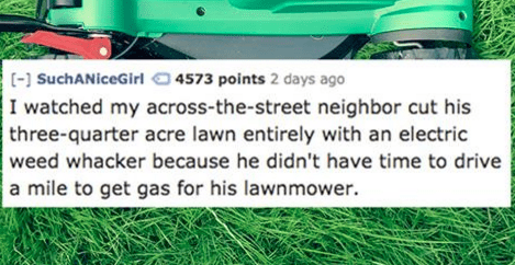 Lawn - [- SuchANiceGirl 4573 points 2 days ago I watched my across-the-street neighbor cut his three-quarter acre lawn entirely with an electric weed whacker because he didn't have time to drive a mile to get gas for his lawnmower.