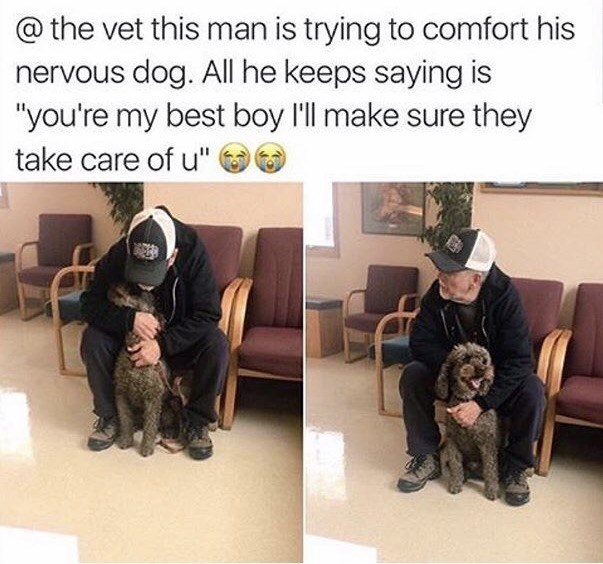 """wholesome meme - Dog - @the vet this man is trying to comfort his nervous dog. All he keeps saying is """"you're my best boy l'll make sure they take care of u"""""""
