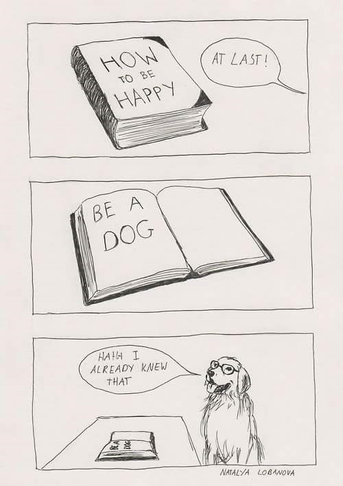 wholesome meme - Text - HOW AT LAST! TO BE HAPPY BE A DOG HAH I ALREADY KNEW THAT NATALYA LOBANOVA