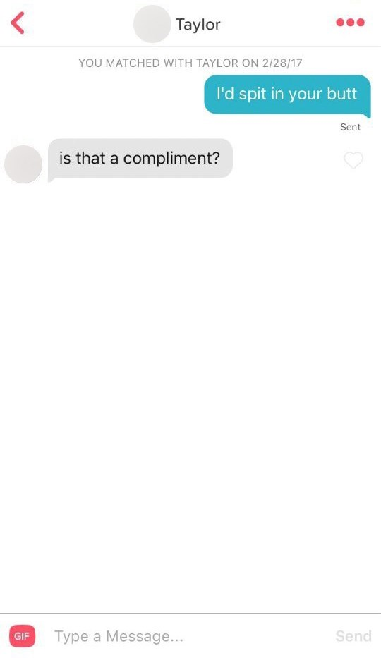 Text - < Taylor YOU MATCHED WITH TAYLOR ON 2/28/17 I'd spit in your butt Sent is that a compliment? Type a Message... Send GIF LF. (D
