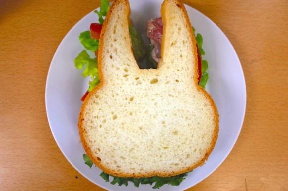 Cheezburger Image 9018140928