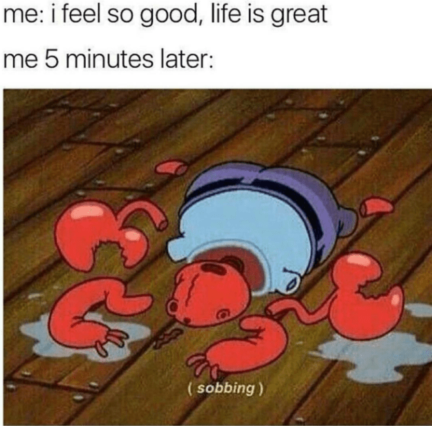 Cartoon - me: i feel so good, life is great me 5 minutes later: (sobbing)