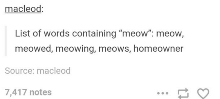 """Text - macleod: List of words containing """"meow"""": meow, meowed, meowing, meows, homeowner Source: macleod 7,417 notes"""
