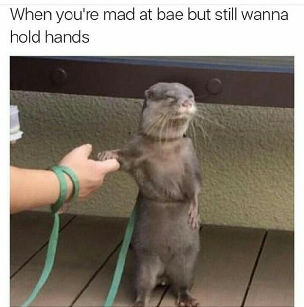Photo caption - When you're mad at bae but still wanna hold hands