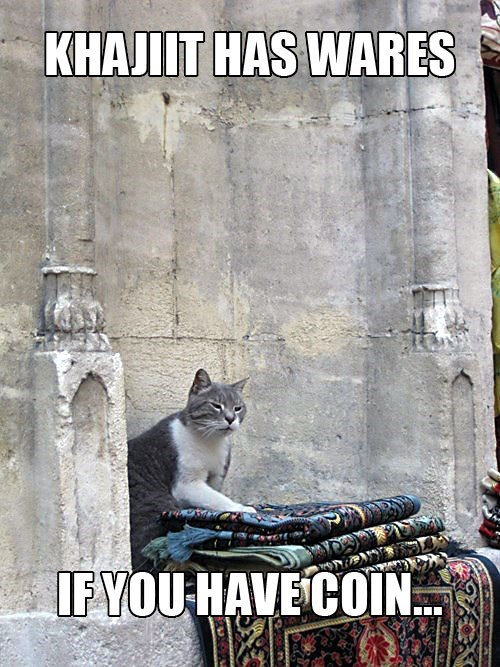 meme - Cat - KHAJIIT HAS WARES IFYOU HAVE COIN