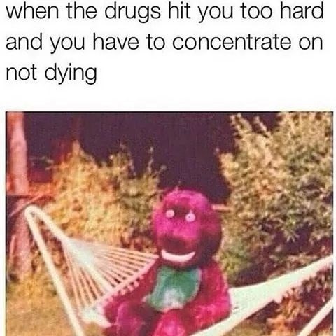 meme - Organism - when the drugs hit you too hard and you have to concentrate on not dying