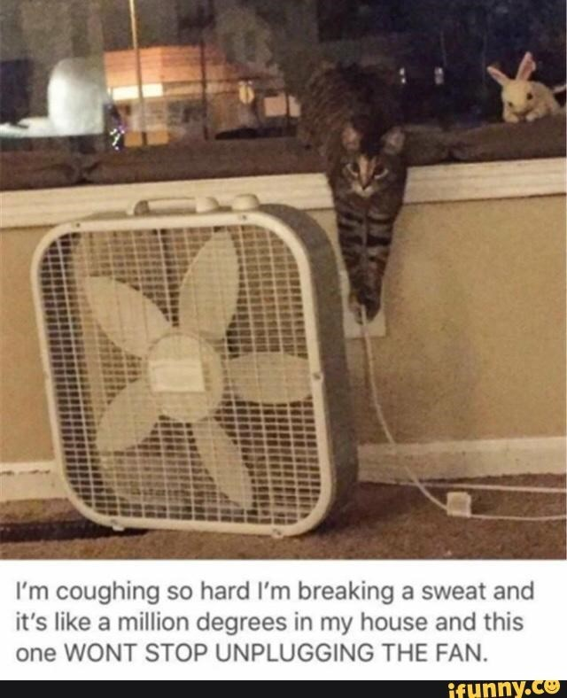 meme - Cage - I'm coughing so hard I'm breaking a sweat and it's like a million degrees in my house and this one WONT STOP UNPLUGGING THE FAN. ifynny.co