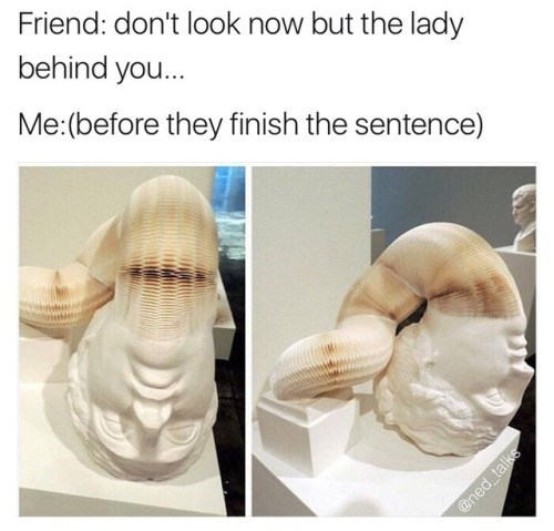 meme - Nose - Friend: don't look now but the lady behind you... Me:(before they finish the sentence) @ned talks