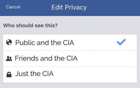 Text - Edit Privacy Cancel Who should see this? Public and the CIA Friends and the CIA Just the CIA