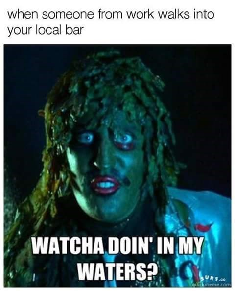 Text - when someone from work walks into your local bar WATCHA DOIN' IN MY WATERS? URF.CO quIEkmeme.com