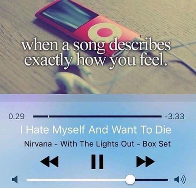 Text - when a song describes exactly how you feel. 0.29 -3.33 T Hate Myself And Want To Die Nirvana With The Lights Out Box Set