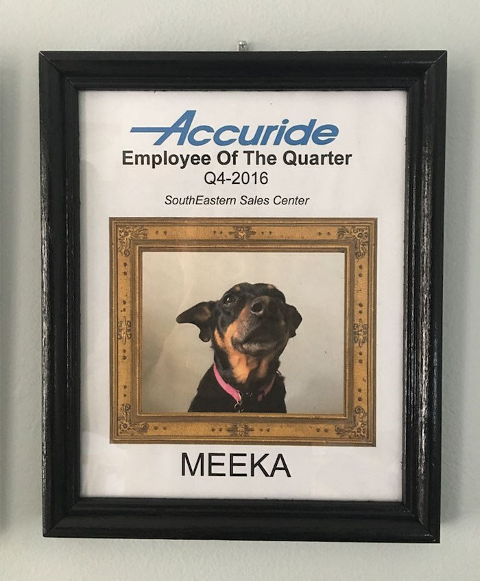 Canidae - Accuride Employee Of The Quarter Q4-2016 SouthEastern Sales Center МЕЕКА