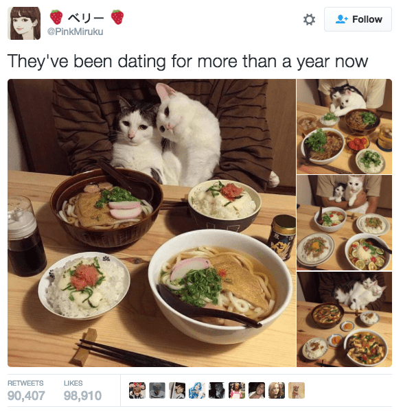 Dish - Follow @PinkMiruku They've been dating for more than a year now RETWEETS LIKES 90,407 98,910