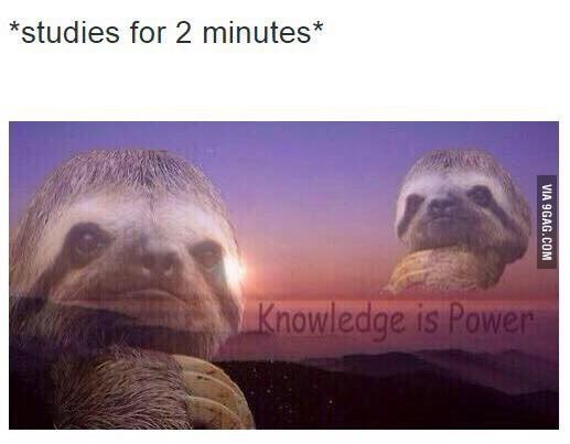 Thursday meme about feeling smart with pic of a sloth on the background of a sunset