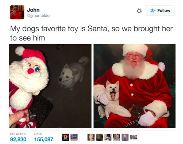 Text - John Follow @jjmontaldo My dogs favorite toy is Santa, so we brought her to see him RETWEETS LIKES 92,830 155,087