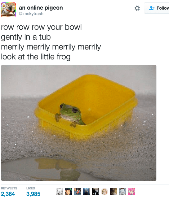Yellow - an online pigeon @imskytrash Follow row row row your bowl gently in a tub merrily merrily merrily merrily look at the little frog RETWEETS LIKES 2,364 3,985