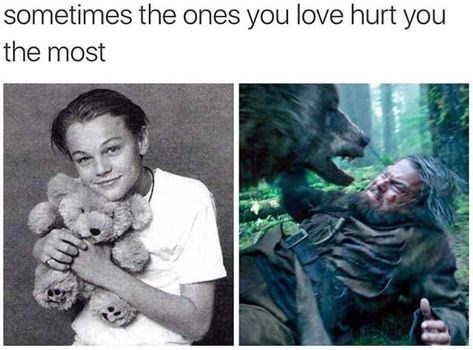 Sunday meme about Leonardo Dicaprio's relationship with bears over the years