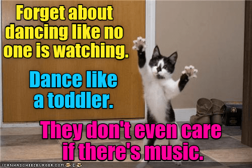 dancing,cat,Music,toddler,no one,caption,watching