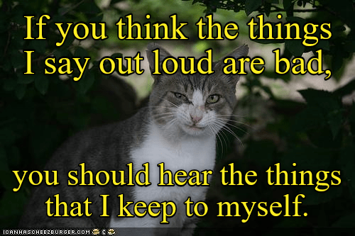 keep things cat myself say out loud caption - 9019766528