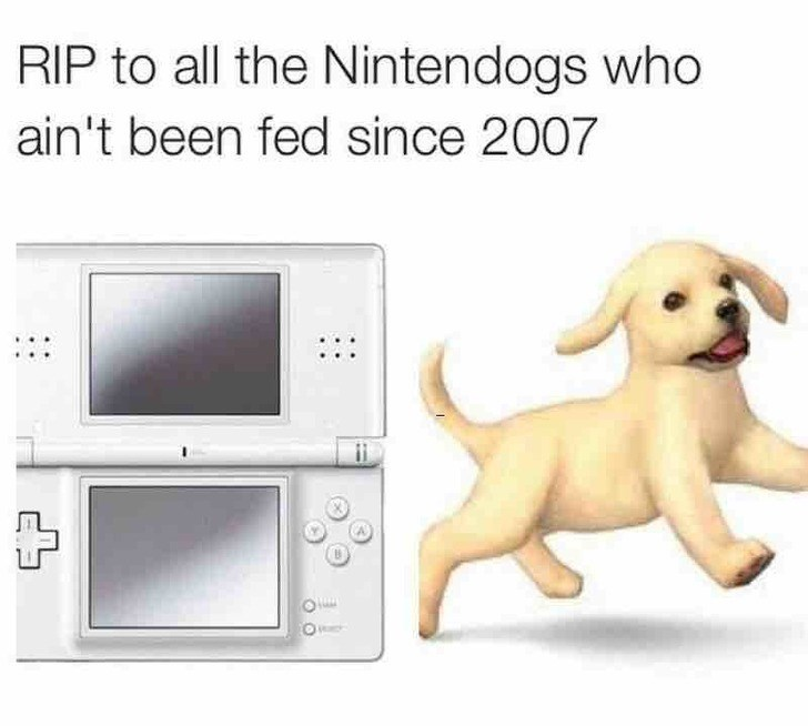 Nintendo ds - RIP to all the Nintendogs who ain't been fed since 2007
