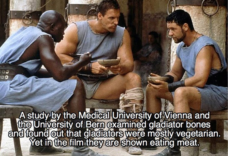 Human - A study by the Medical University of Vienna and the University of Bern examined gladiator bones and found out that gladiators were mostly vegetarian. Yet in the film they are shown eating meat.
