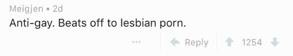 Text - Meigjen 2d Anti-gay. Beats off to lesbian porn. Reply 1254