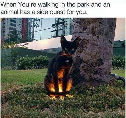 Thrusday meme with pic of cat standing above ground light as if it's an interactive figure in a video game