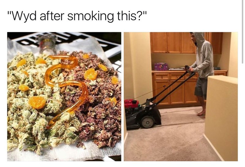 WYD after smoking this meme with pic of man lawn mowing a carpet