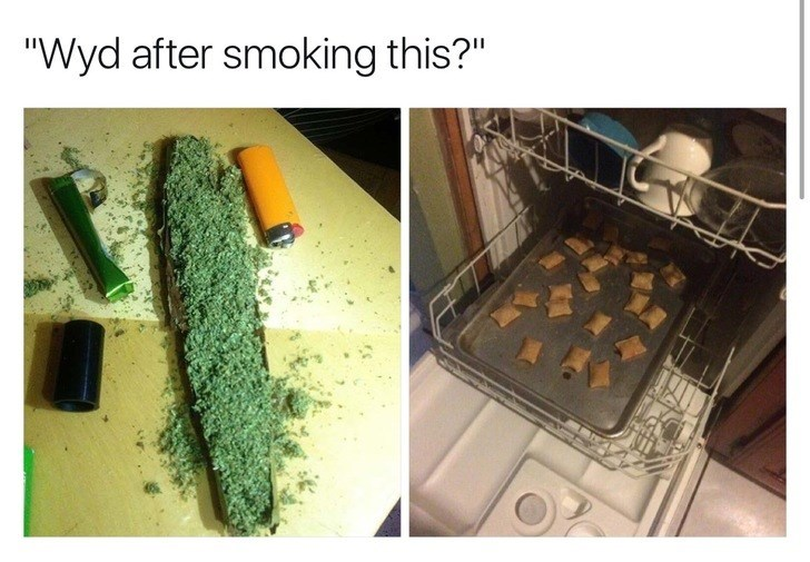 WYD after smoking this meme with pic of dishwasher loaded with food