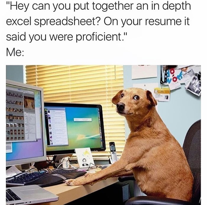 work meme about lying about being proficient in Microsoft office programs