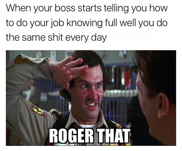 work meme about being told how to do your job with Doofy from Scary Movie