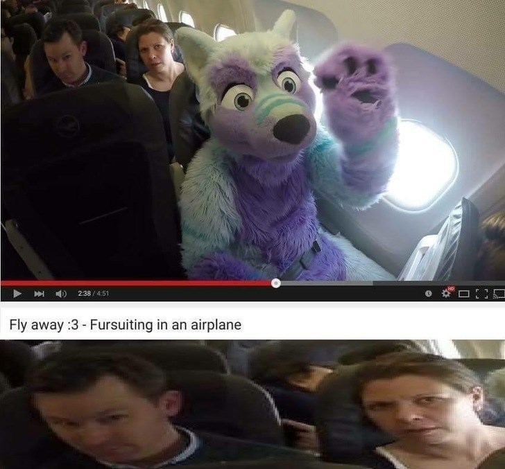 cringeworthy post about fur suiting in an airplane
