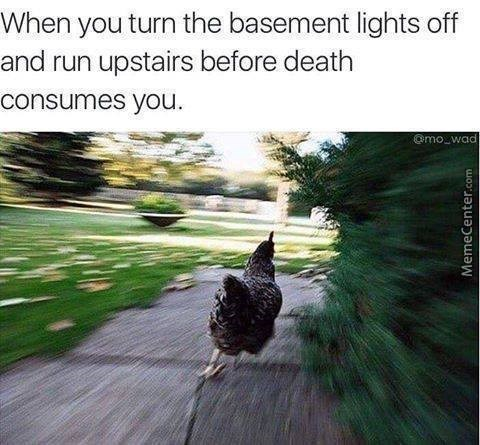 Bird - When you turn the basement lights off and run upstairs before death consumes you @mo wad MemeCenter.com