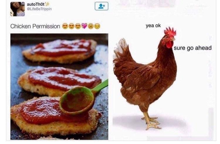 Chicken - autoThot OLifeBeTrippin yea ok Chicken Permission sure go ahead