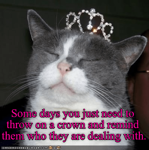 cat with crown caption throw - 9021719296