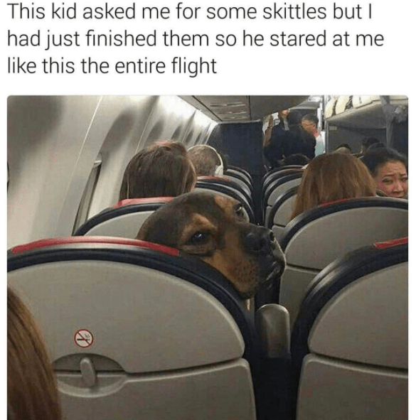 Transport - This kid asked me for some skittles but I had just finished them so he stared at me like this the entire flight