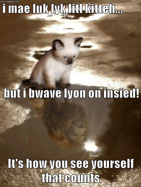 brave yourself see lion kitty caption little