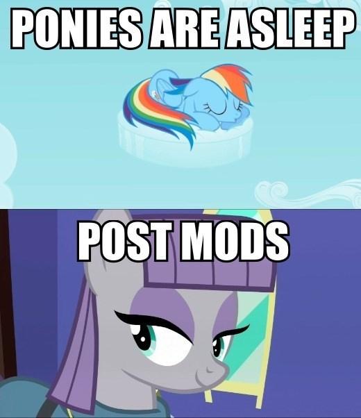 puns,Memes,maud pie,rainbow dash